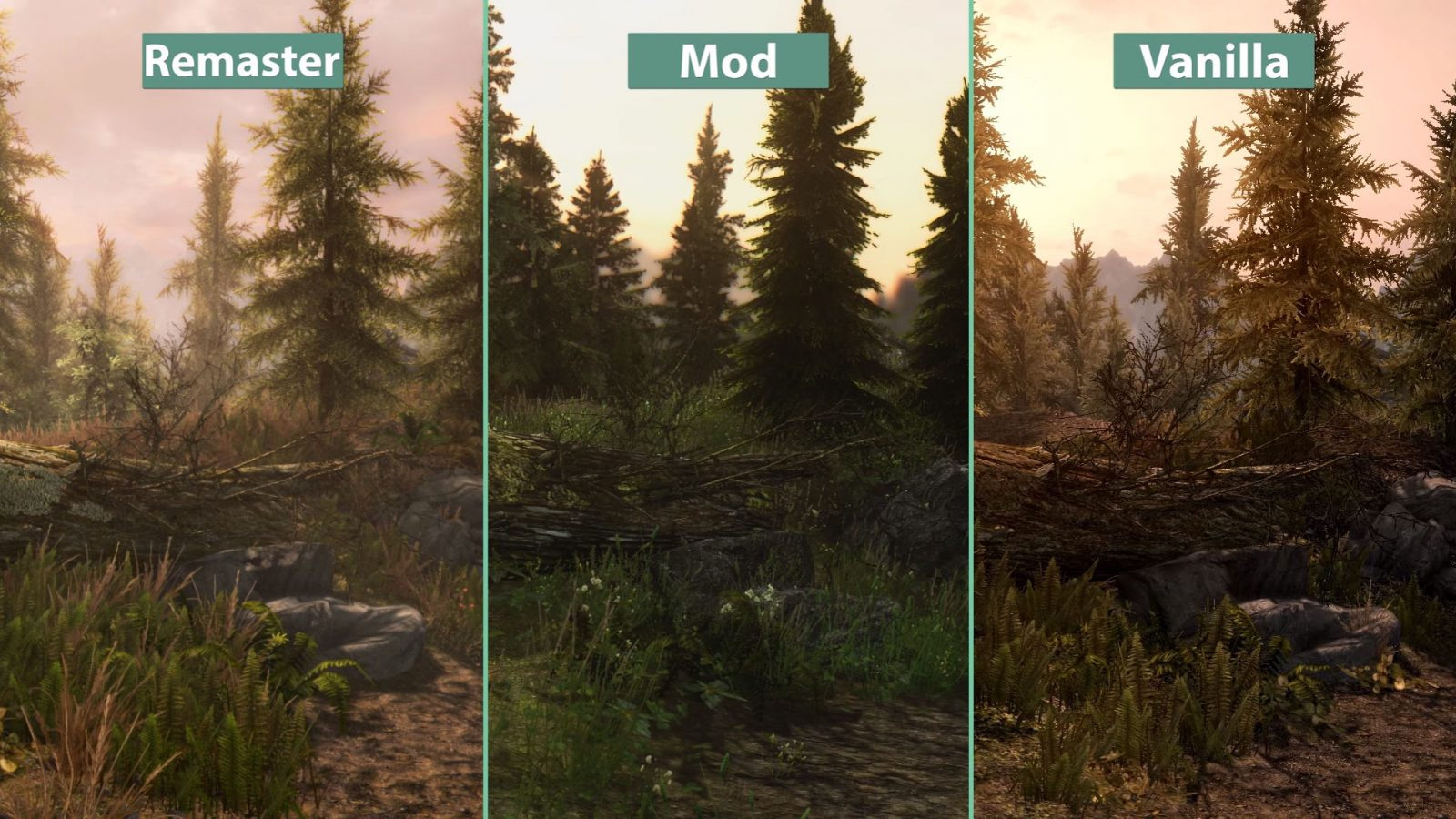 20 Mods You Should Get For Skyrim: Special Edition on Xbox ...